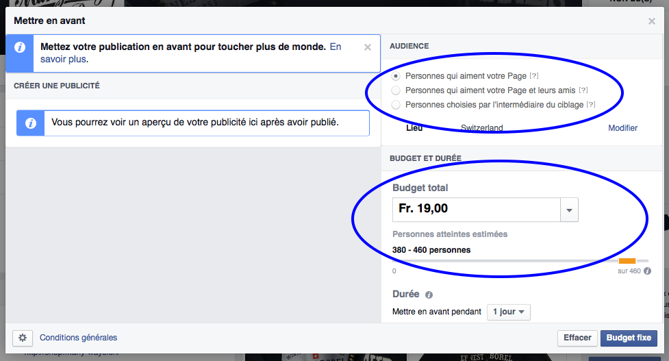 Facebook Boost Post - Options